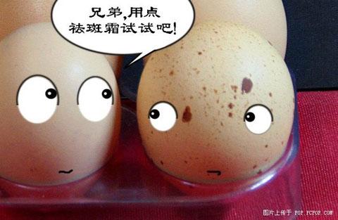 鸡蛋的争吵2