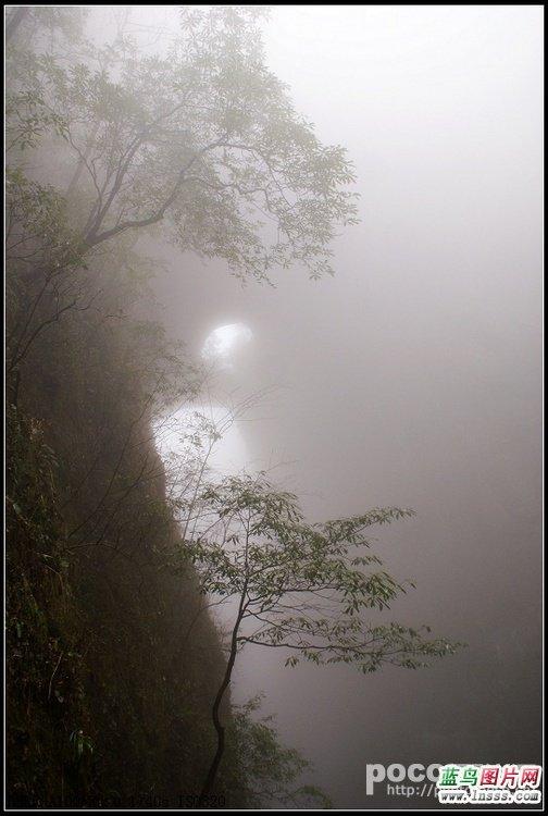 迷雾风景图片1