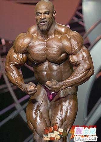 肌肉男的大鸟1