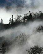 被大雾笼罩的元阳风景区景观