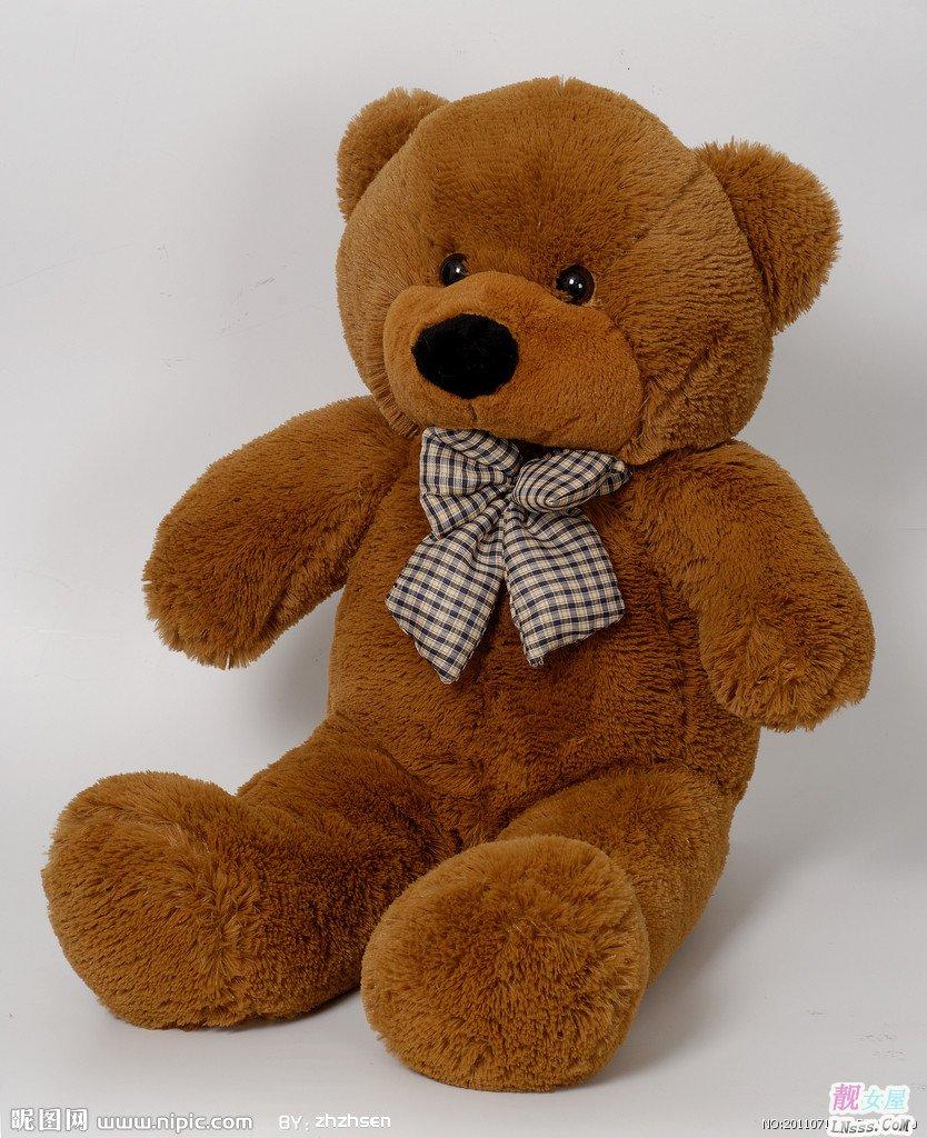 泰迪熊�D片